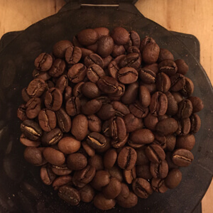 Gamut Coffee Beans