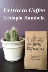 Extracto Coffee Ethiopia Hambela